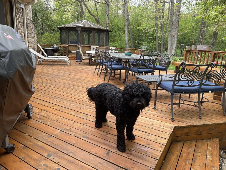 Read more about the article Restoring a Cedar Deck in Lincolnshire, IL