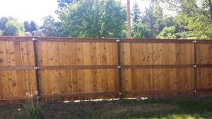 Cedar Fence After 4