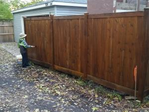 Cedar Fence After applying Timber oil Brown Sugar