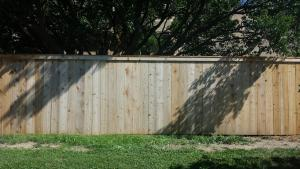 Cedar Fence Before