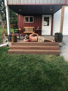 Cedar Tone Decking Before applying Timber Oil Amaretto