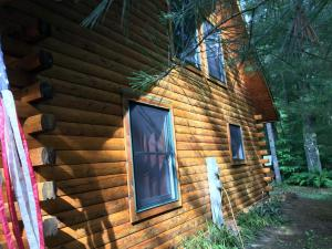 Northern white cedar log cabin after applying Timber Oil Warm Honey Gold (2)