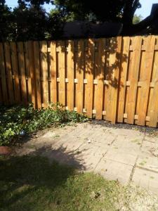 Ruff cut, pressure treated Pine, shadow box fence After Staining with Timber Oil Warm Honey Gold