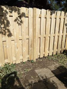 Ruff cut, pressure treated Pine, shadow box fence After Stripping and Brightening EFC-38 Citralic
